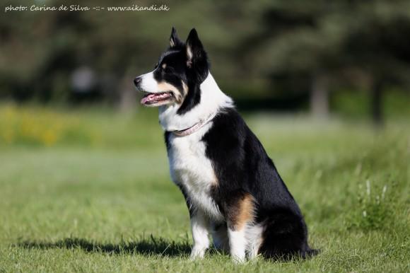 Sookie <3