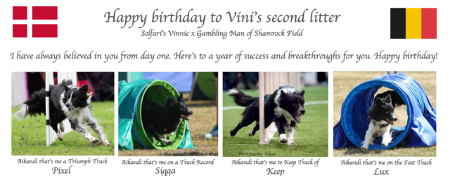 Today Vini's second litter turns 2 years old – happy birthday to all of you!