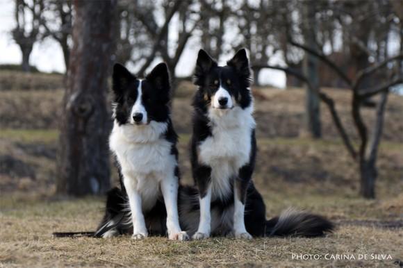 Vini and Sookie